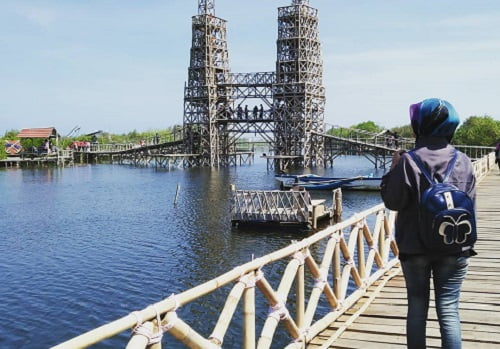 jembatan mangrove kulonprogo