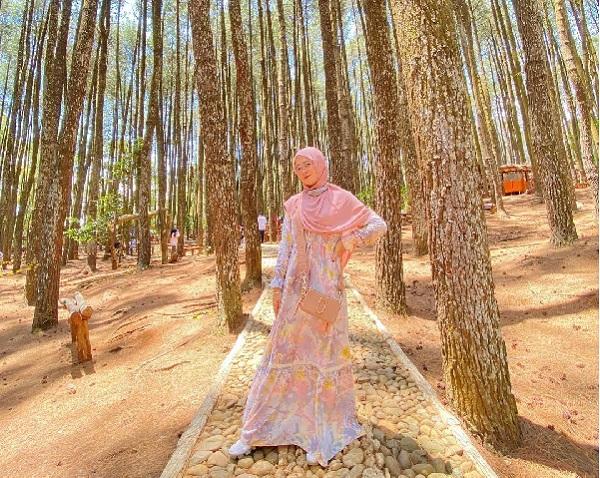 Refresh Sejenak di Hutan Pinus Mangunan Dlingo Bantul di Jogja 2