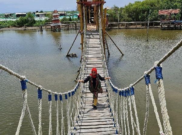 Wisata Jembatan Mangrove Wana Tirta Kulonprogo Terbaru di Jogja 7